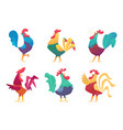 rooster cartoon chicken farm male birds vector image