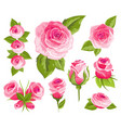 vintage flowers set pink roses and buds wedding vector image