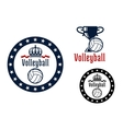 Volleyball sport game heraldic emblems vector image