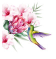 watercolor tropical paradise bird with colorful vector image vector image