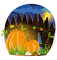 Autumn pumpkins vector image