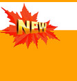 banner for autumn new collection vector image