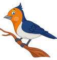 cartoon bird on a tree branch vector image vector image