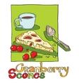 cranberry scones vector image vector image