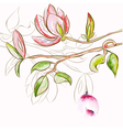 decorative spring flowers vector image vector image