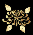 gold plant lotus flower on black background vector image vector image