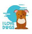 love dog pet vector image vector image
