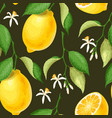 seamless pattern with lemons vector image vector image
