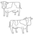 set of cow vector image