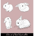 Vintage set with cute rabbits vector image vector image