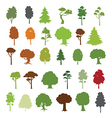 30 forest trees vector image