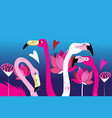 beautiful portraits graphics pink flamingos vector image vector image