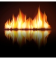 Burning fire flame on black background vector image vector image