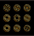 creative concept design logo elegant luxury vector image vector image