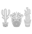 entangle cactus set hand drawn outline desert vector image
