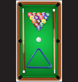 Billiard set Billard balls cue and billiard vector image