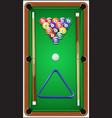 Billiard set Billard balls cue and billiard vector image