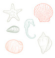 hand drawn seashells vector image vector image