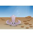 squidth vector image