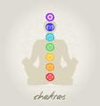 chakras body vector image