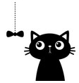 cute cat head face looking at bow hanging on vector image vector image