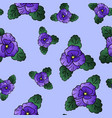 pansy seamless colorful pattern vector image