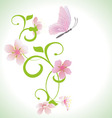 pink butterfly with spring flowers