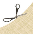 the scissors cut the cloth vector image