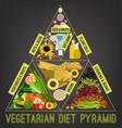 vegetarian food pyramid vector image vector image