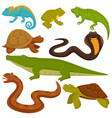 reptiles and reptilian animals turtle crocodile vector image