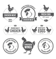 Chicken meat and eggs 1 vector image vector image
