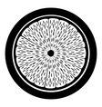Citrus fruit button vector image vector image