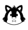 cute wolf cartoon vector image vector image