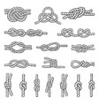 different nautical knots vector image vector image