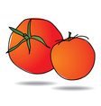 Freehand drawing tomato icon vector image vector image