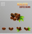 image of realistic coffee beans compositions on a vector image vector image