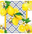 mediterrraean lemon and tiles watercolor pattern vector image