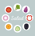 salad vegetables menu healthy image vector image