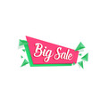 sale banner template isolated vector image vector image