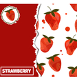 Strawberrycover vector image vector image