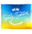 calligraphy and summer background vector image