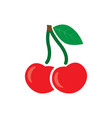 cherry icon sweet cherries vector image