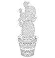entangle cactus hand drawn outline desert plant vector image
