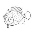 funny fish sketch vector image vector image