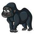 Gorilla with sad smile vector image
