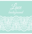 mint lace border vector image vector image