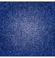 Photorealistic of jeans texture vector image vector image