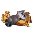rich raccoon sleeping on a sack of gold coins vector image vector image