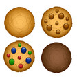 set of oatmeal cookies with chocolate chip and vector image