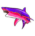 shark sketch graphics color picture vector image vector image